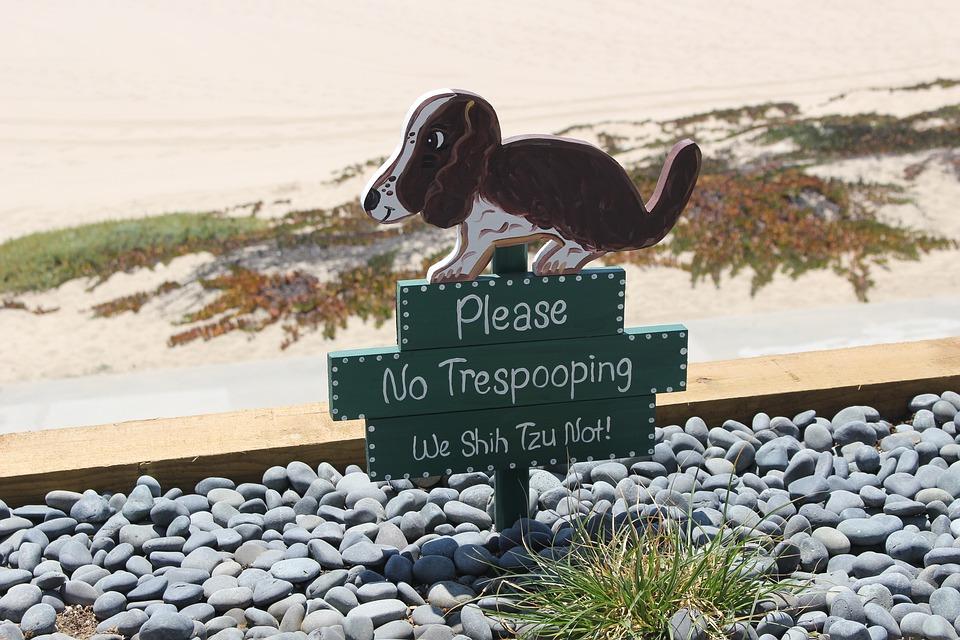 犬 うんち 自然 動物 トッコ 記号 汚い 衛生 若いです 廃棄物 バッグ におい