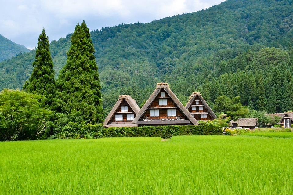 日本 風景 ランドマーク 山 ツリー 観光 シーズン 旅行 アジア 河口湖 川口
