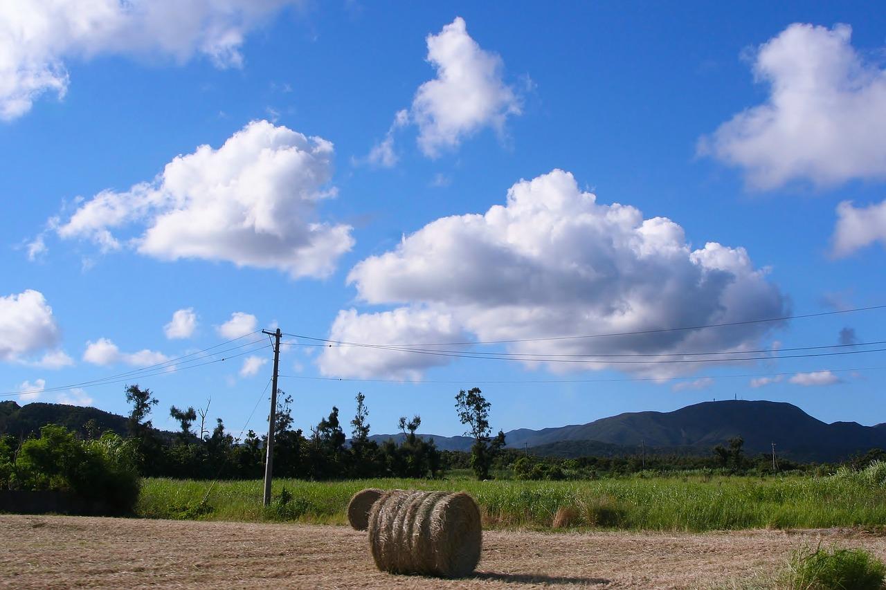 牧草 土 電信柱 耕す 雲 白雲 青空 風 草木 畑 石垣島 沖縄 日本 離島