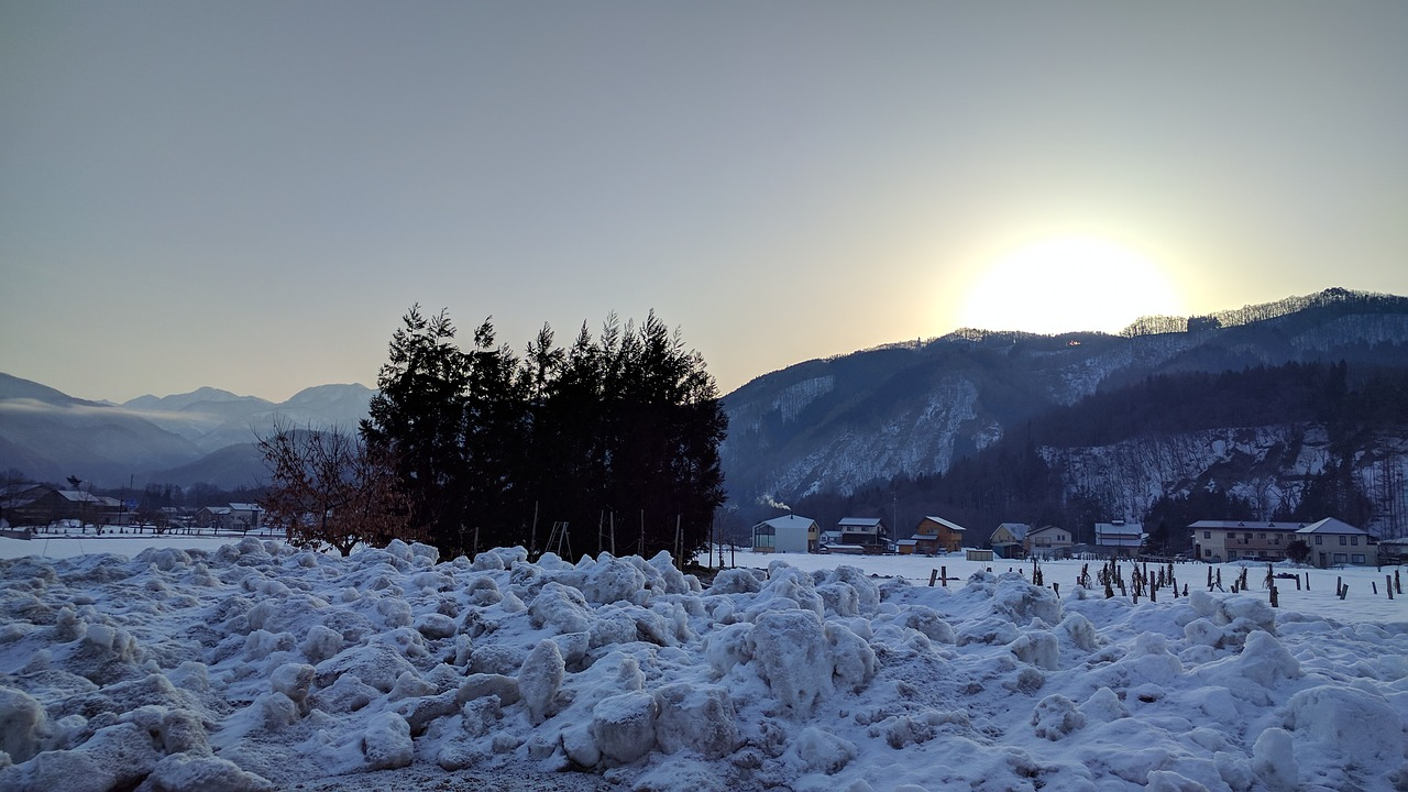 雪 朝 山 木 日の出 日本 長野 白馬 風景 朝焼け 太陽 初春 雪山 針葉樹