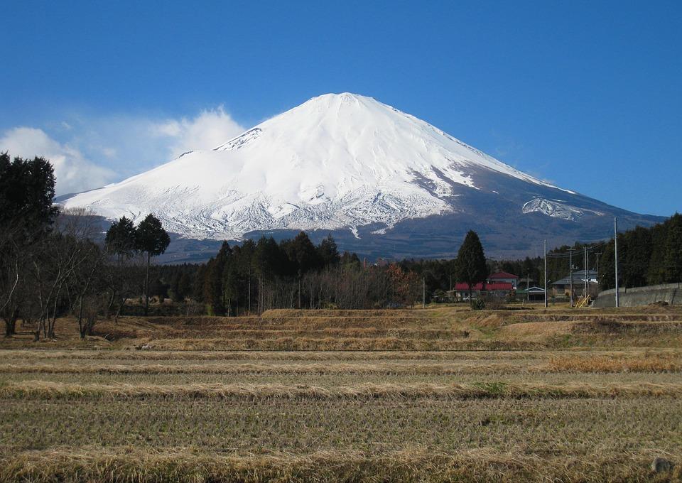 富士山 御殿場 田舎 稲 冬 静岡県 小山