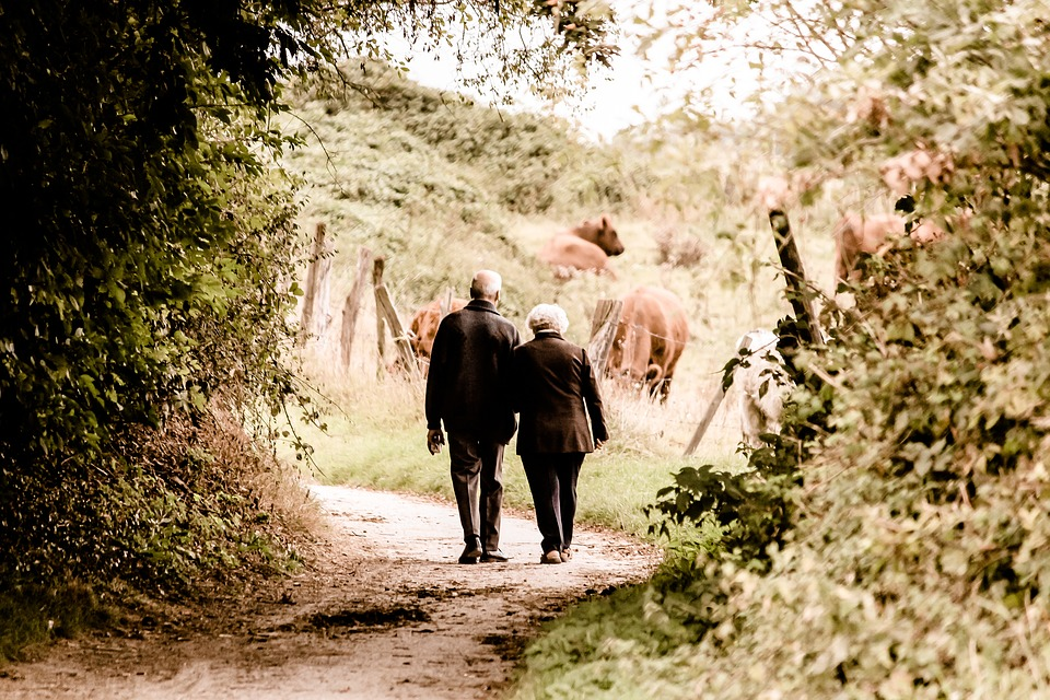 ペア 高齢者 年金受給者 年齢 シルエット 昔の恋 人間 個人 ハーモニー カップル
