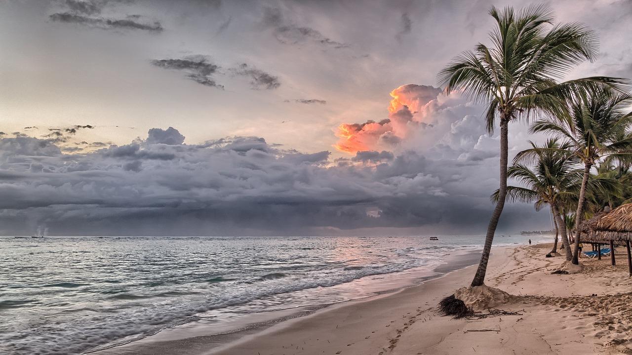 ビーチ ドミニカ共和国 カリブ海 夏 海 熱帯 水 青 ヤシの木 砂 空 休暇 旅行